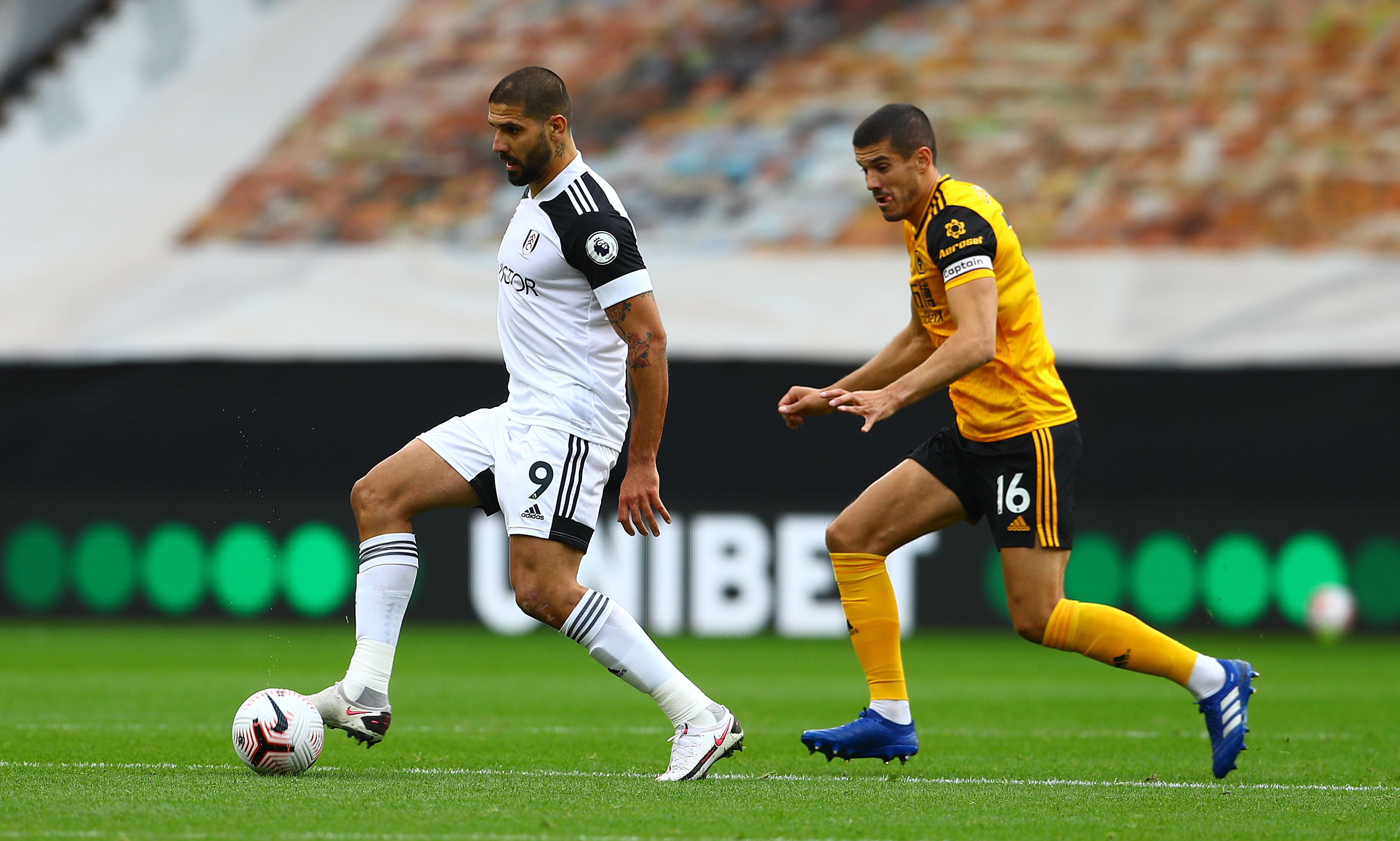 FULHAM WOLVES